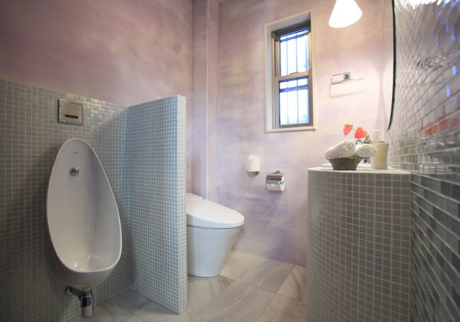 Toilet renewal
