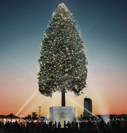 世界一のクリスマスツリーPROJECT